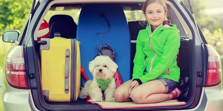 Car hire and your rights