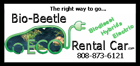 Maui vehicle rentals logo design