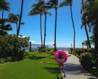 Maui car Rentals Review